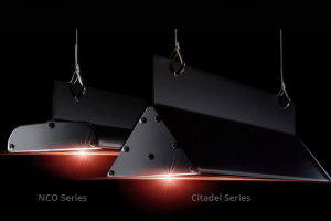 Tactik Lighting NCO & CItadel Series